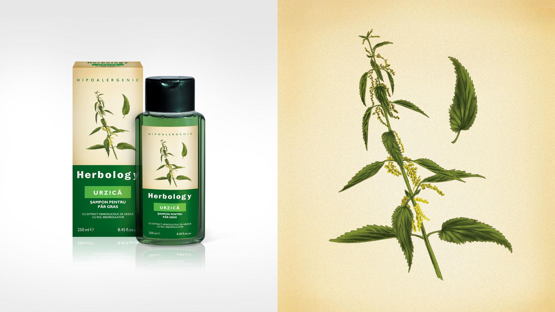 herbology_urzica